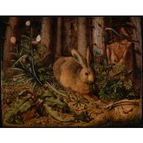 Hare in the Forest Duvar Kağıdı