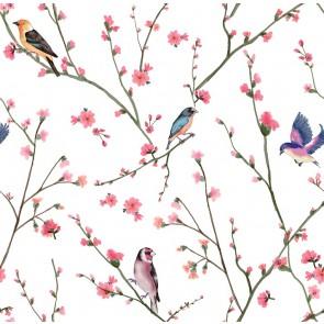 Daldaki Kuş Duvar Kağıdı