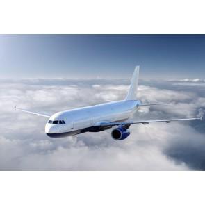 Boeing Uçak Modeli 3 Boyutlu Manzara Duvar Kağıdı Modeli
