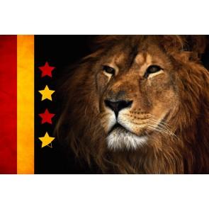 Alemin Kralı Galatasaray Poster Duvar Kağıdı Önizleme