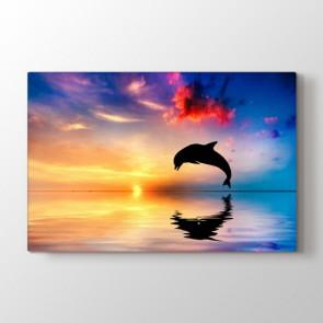 Flipper - Vahşi Yaşam Kanvas Tablo Modeli