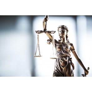 Hukukun Eşitliği