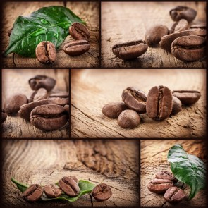 Kahve Tohumları