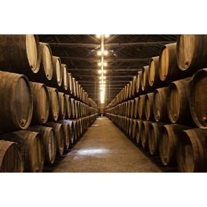 Şarap Mahzeni ve Fıçıları