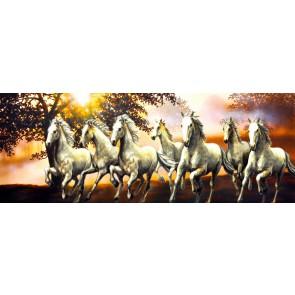 Yedi Özgür At