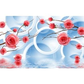 Güller ve Daireler