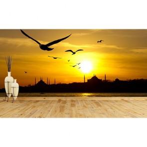 İstanbul Martıları - Duvar Sticker ve Duvar Resimleri