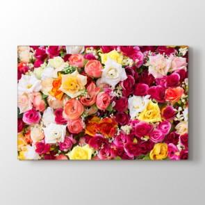 Her Renkten Güller Tablosu | Modern Çiçek Tabloları