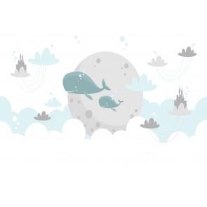 Balinalar Diyarı