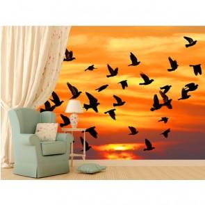 Kuşlar Sonbaharda Gelir Duvar Kağıdı