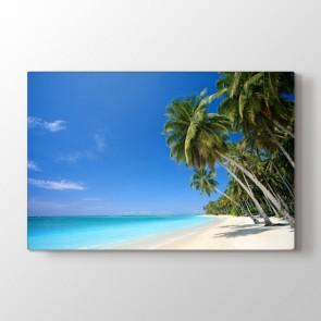 Palmiye - Doğa Manzara Kanvas Tablosu