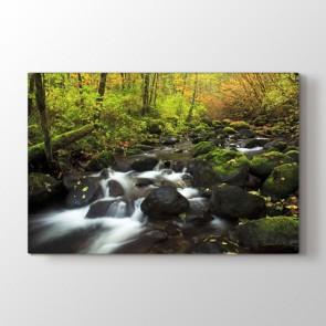 Nehir - Doğa Manzara Duvar Dekoru Kanvas Tablo