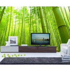 Bambular Duvar Kağıdı