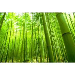 Bambular
