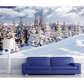 Kar Kış Duvar Kağıdı