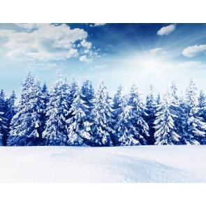 Beyaz Orman