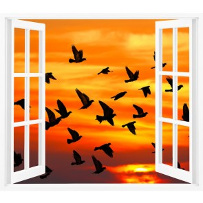 Penceredeki Kuşlar