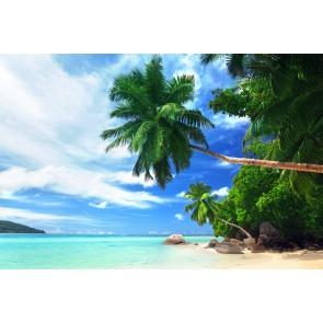 Tropikal Tatil