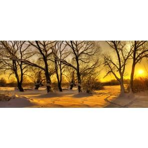 Kar ve Güneş'in Uyumu
