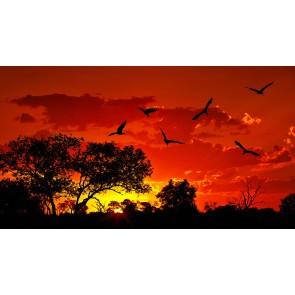 Kırmızı Gökyüzü