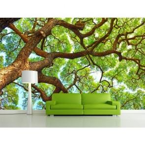 Yüksek Ağaç Duvar Kağıdı Önizleme