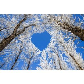 Doğa Aşkı