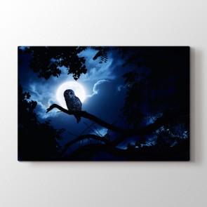 Gece Baykuşu - Doğa Manzara Resimli Tablo Modeli