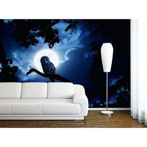 Gece Baykuşu - 3 Boyutlu Duvar Kağıdı Modeli
