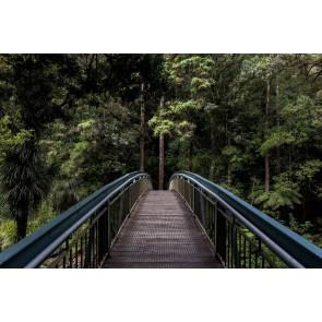 Orman Köprüsü