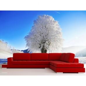 Özel Kış Ağacı