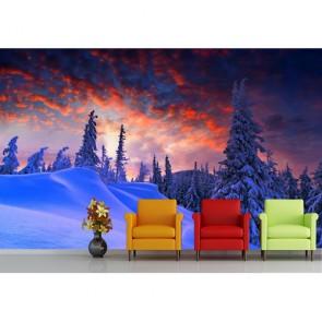Kış ve Christmas 3 Boyutlu Duvar Kağıdı