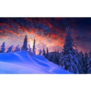 Kış ve Christmas