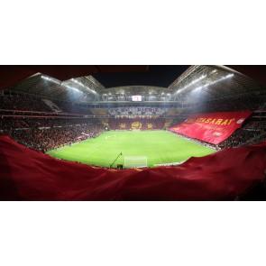 Galatasaray Türk Telekom Arena