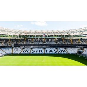 Beşiktaş Stadı