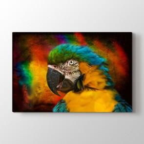 Hırçın Papağan - Vahşi Yaşam Duvar Dekor Kanvas Tablo