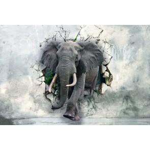 Güçlü Fil