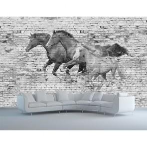 Atlı Duvar 3 Boyutlu Resimli Duvar Kağıdı