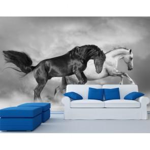 Atlar Şaha Kalktı 3 Boyutlu Manzara Duvar Kağıdı Modeli