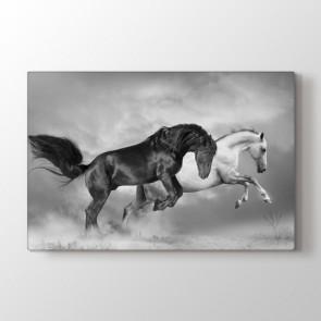 Atlar Şaha Kalktı Tablosu | At Resimli Tablolar
