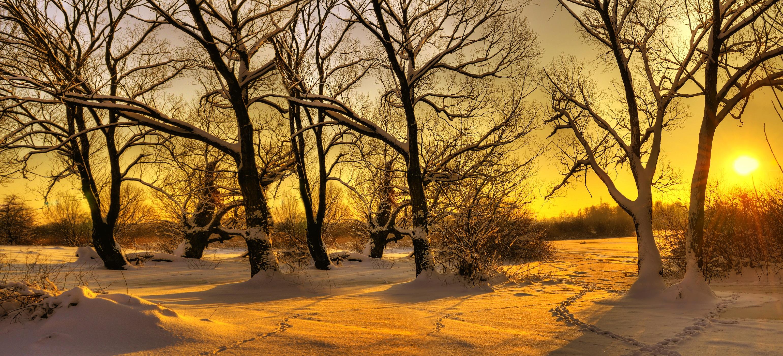 Kar ve Güneş Duvar Kağıdı Önizleme